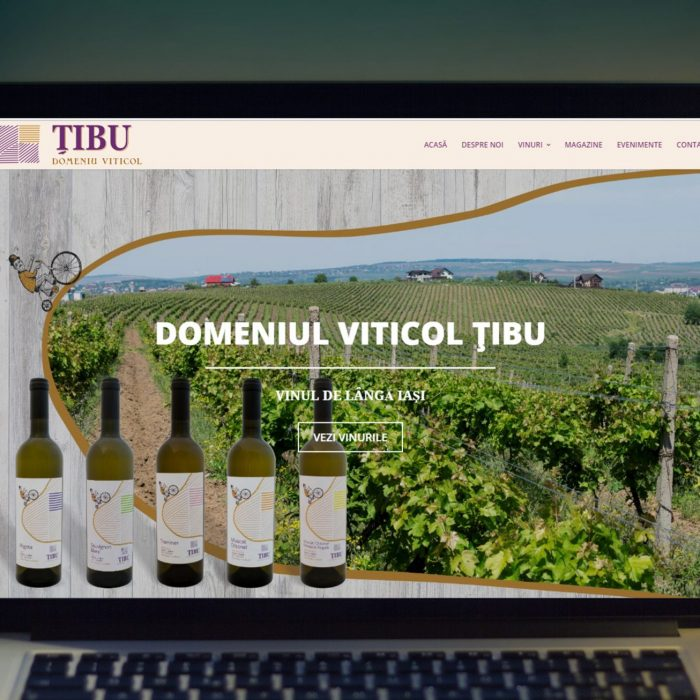 Domeniul viticol Tibu